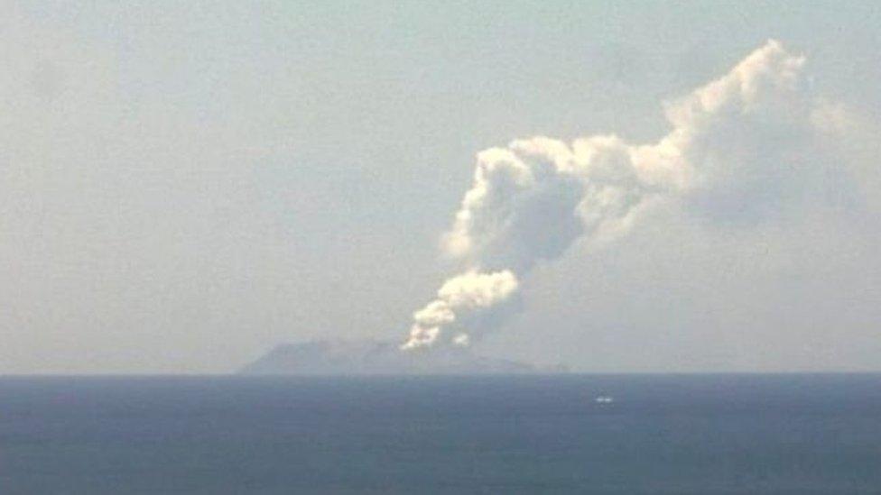 न्यूज़ीलैंड ज्वालामुखी विस्फोट: द्वीप पर किसी का ज़िंदा होना मुश्किल