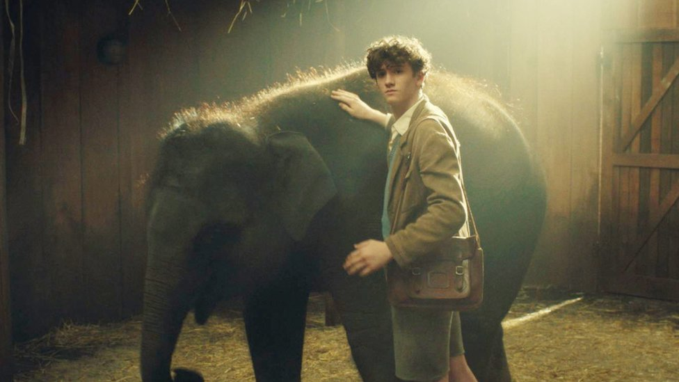 Belfast Blitz elephant story hits the big screen