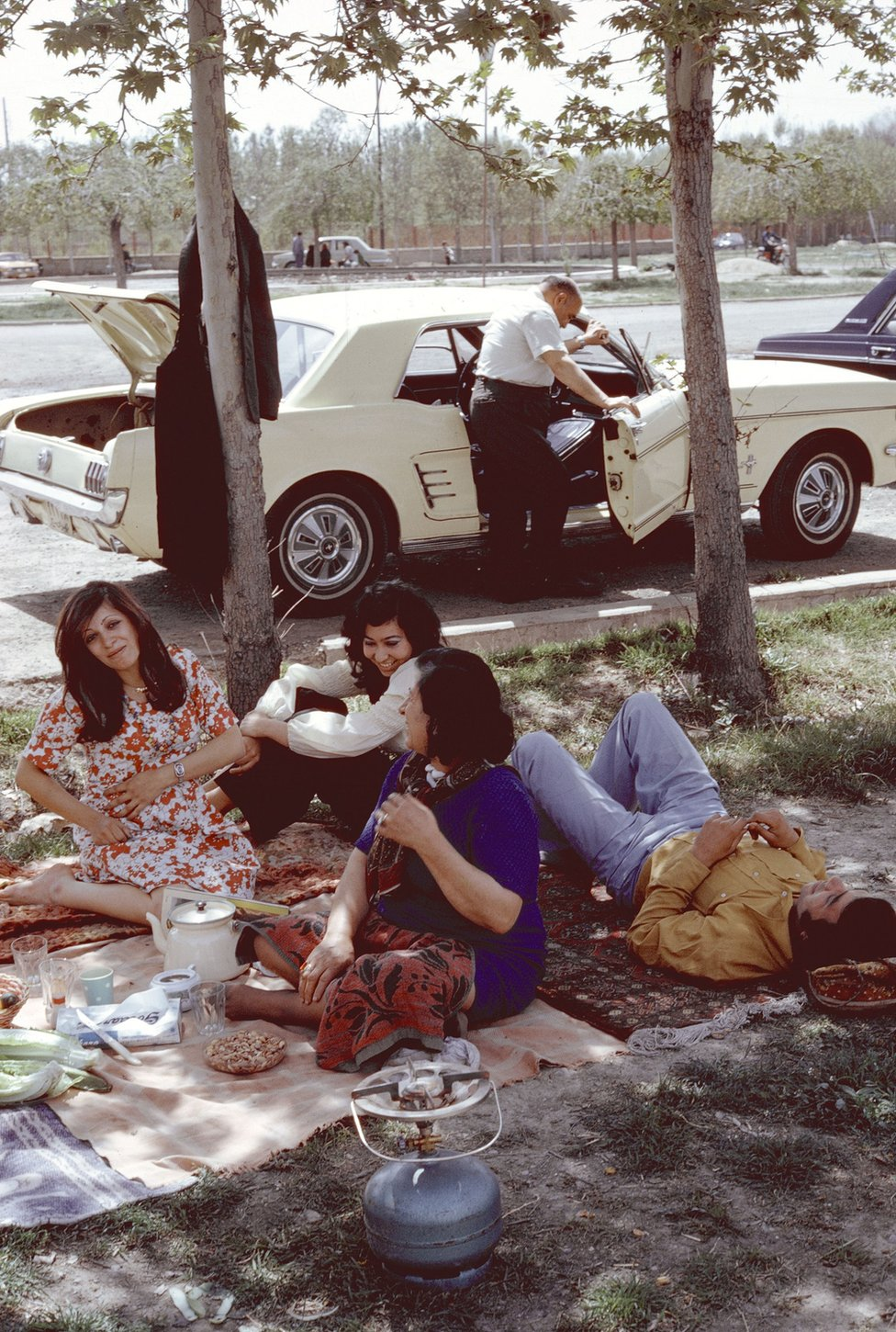 A group of men and women sit having a picnic in Tehran in 1976
