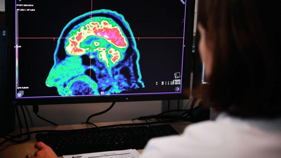 Una investigadora analiza una tomografía