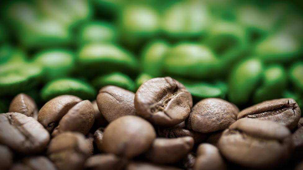 Granos verdes y granos tostados de café