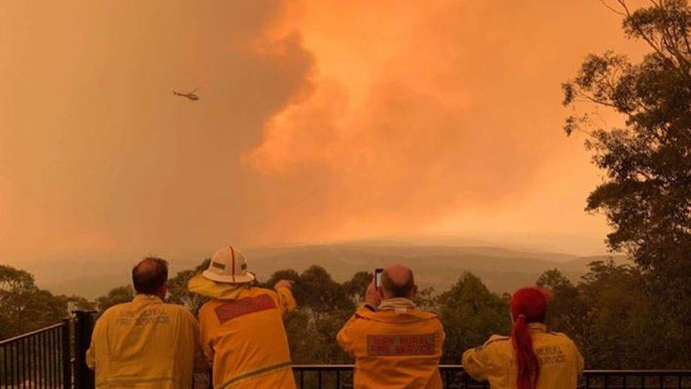 Volunteer firefighters watch a blaze in Sydney's south-west