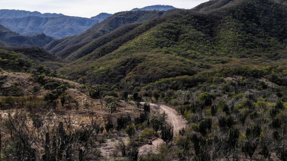 Las montañas de Badiraguato, en el estado de Sinaloa, México NO USAR / BBC