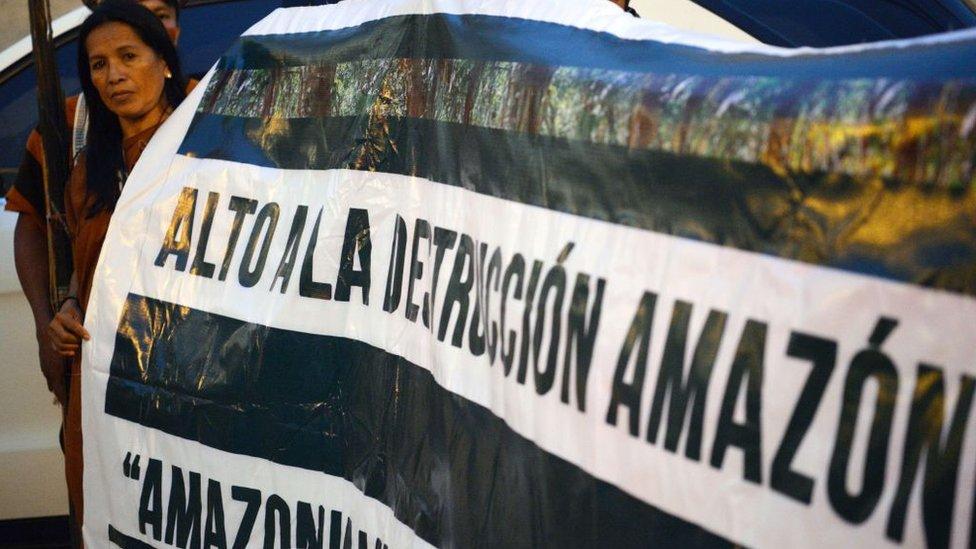 Cartel en defensa de la Amazonía.