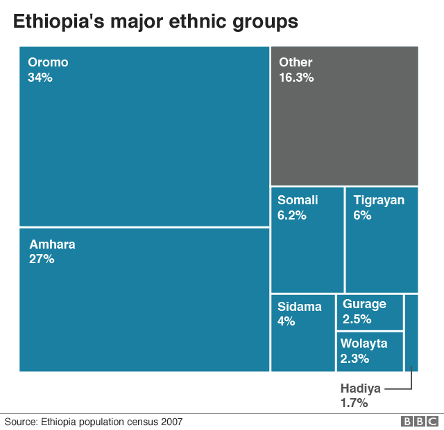 Diagram showing Ethiopia's ethnic composition