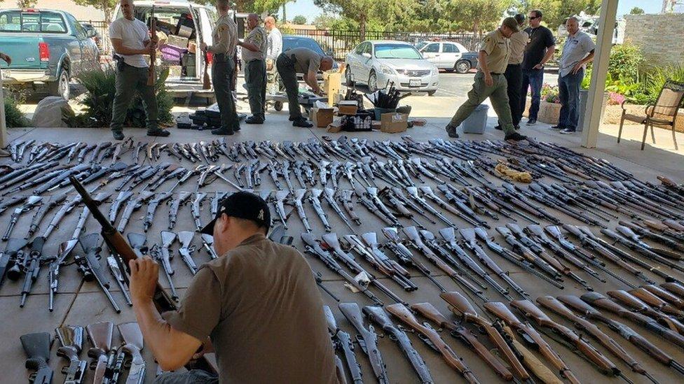 the seized guns