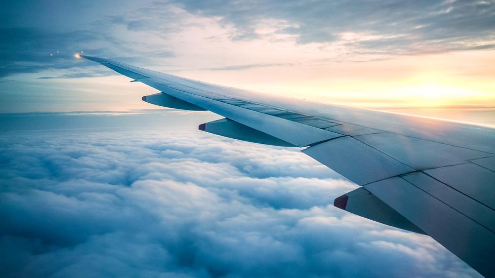 Ala de un avión