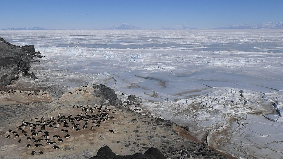 The Ross Sea