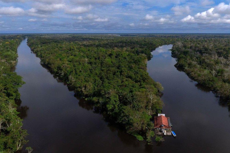 Amazonas.