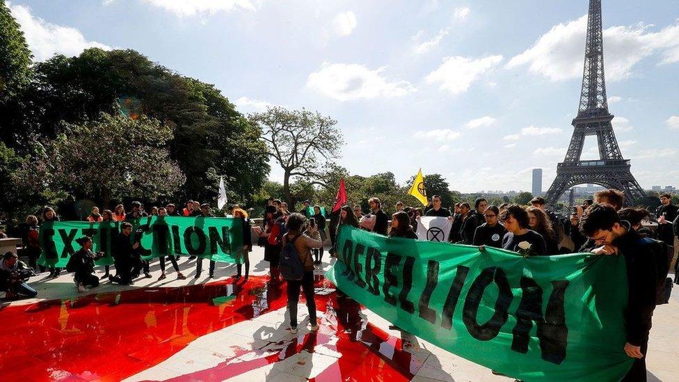 """Organizatori """"Pobune protiv izumiranja"""" izjavili su da je rad Erike Čenovet inspirisao njihovu kampanju"""