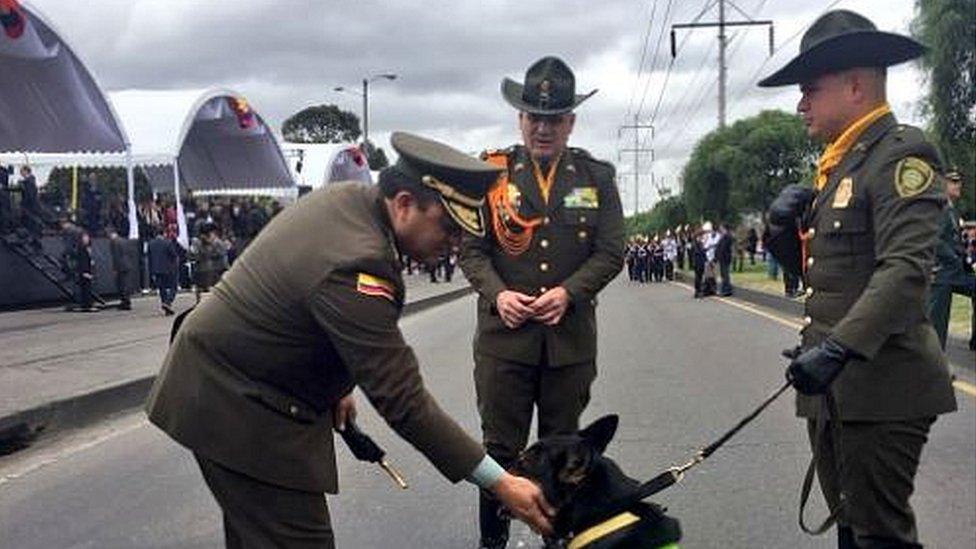 Sombra at a police parade