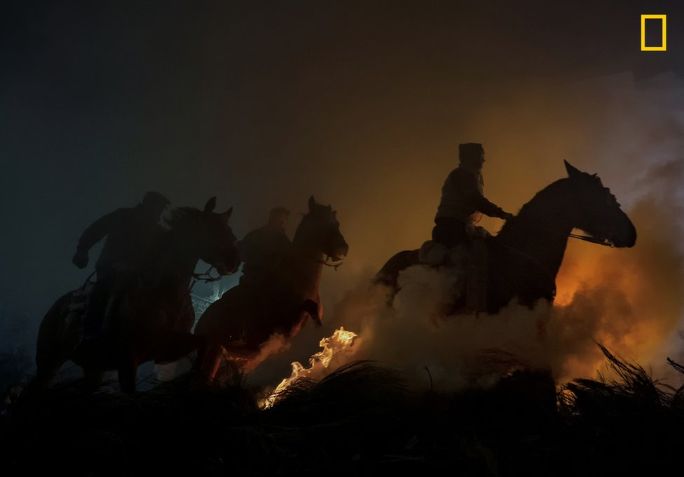 Horses leap over flames