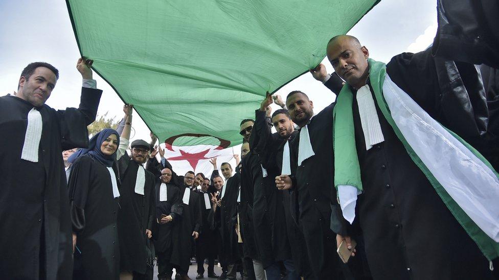 محامون جزائريون