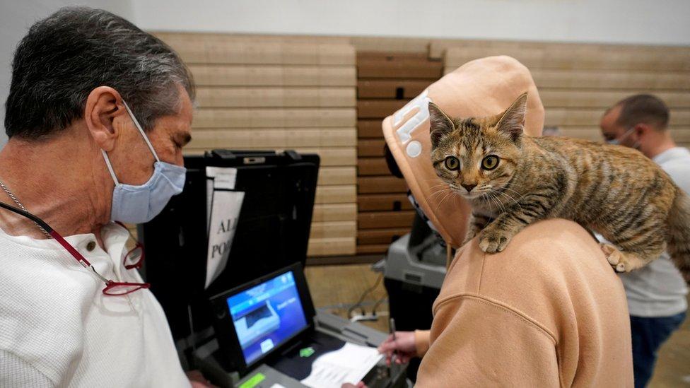 Votante con un gato en el hombro en Kentucky