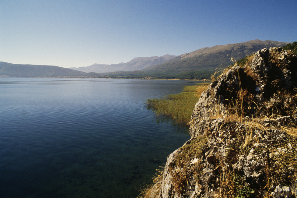 Prespansko jezero zaraslo u trsku
