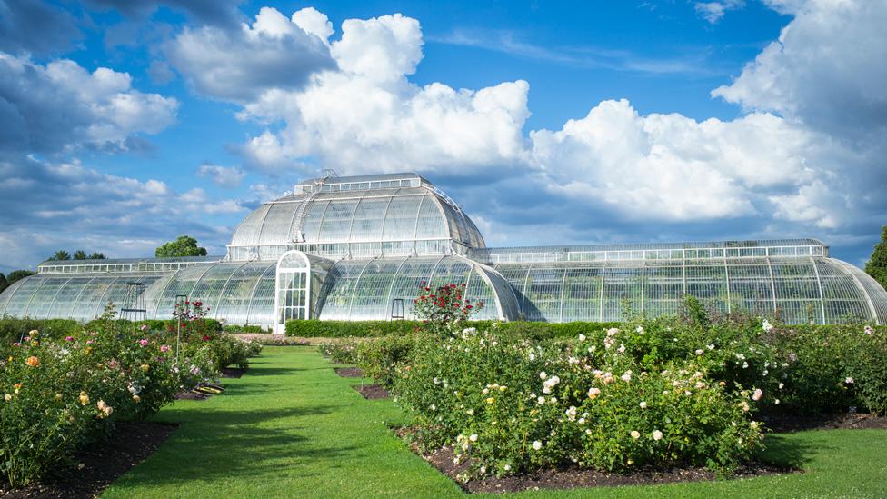 El invernadero de Kew Gardens