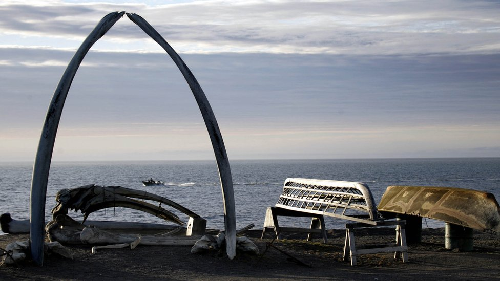 Whale bones sit on the edge of the city, where many residents are subsistence hunters