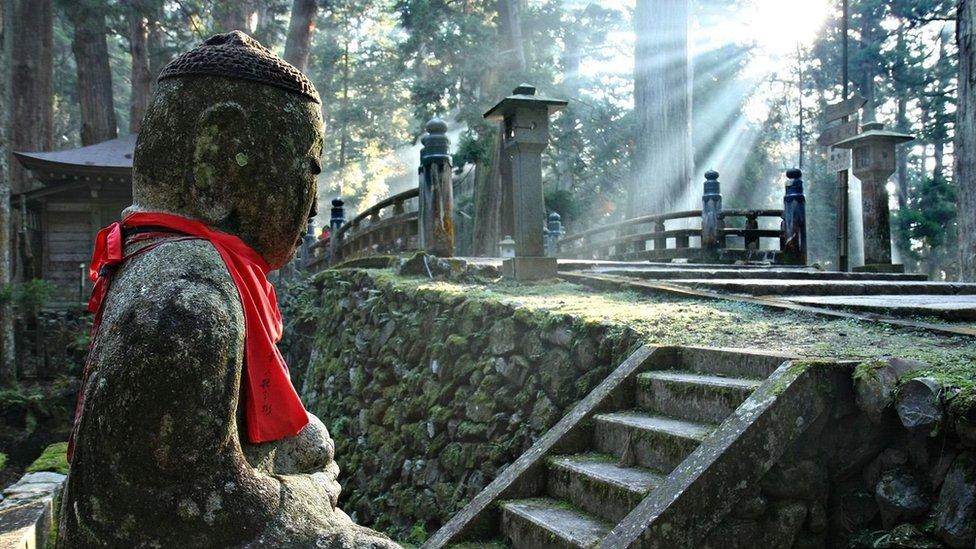 رحلة إلى عالم المعابد الخفي في اليابان