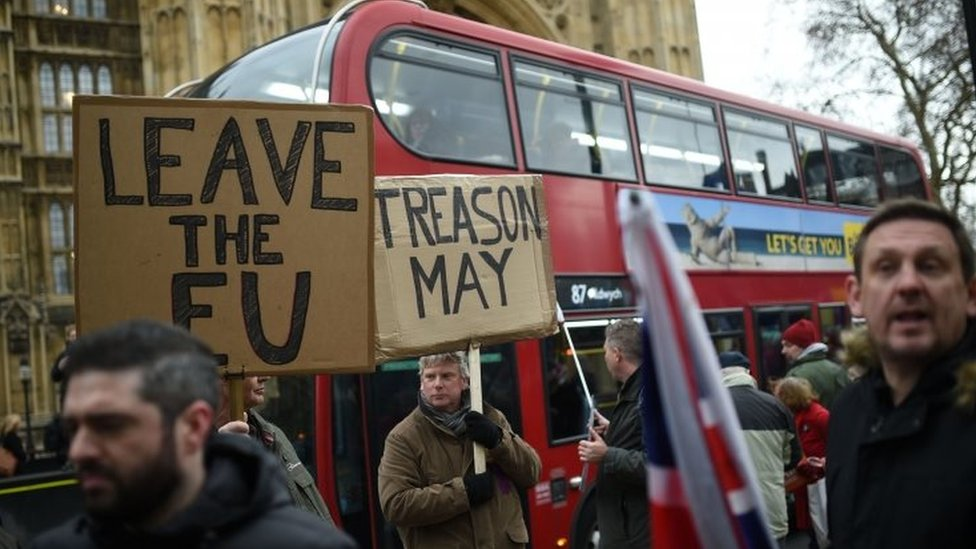 Pro-Brexit demonstrators