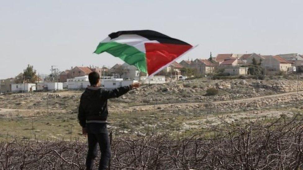 Un joven con una bandera de Palestina.