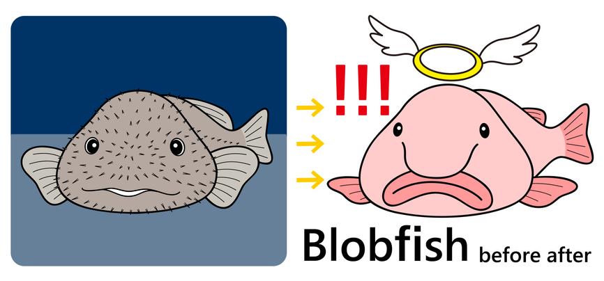 Dibujo de antes y después del pez borrón.