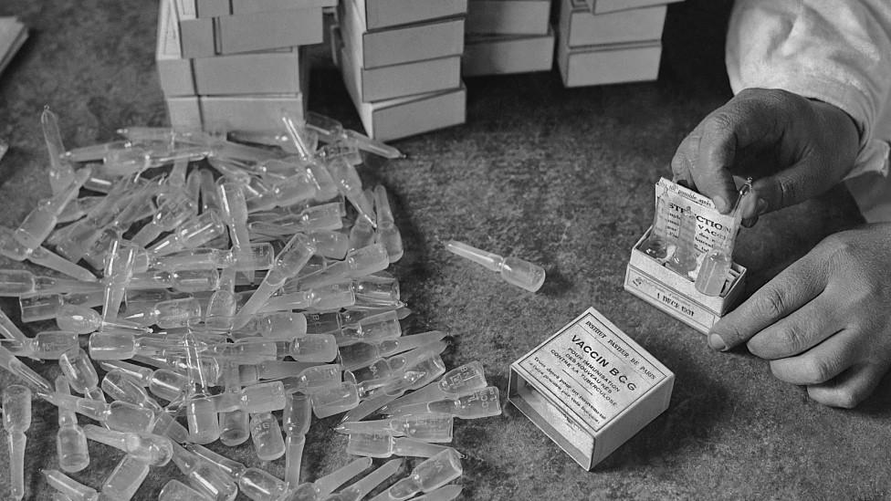 Cajas de vacunas BCG en una foto histórica