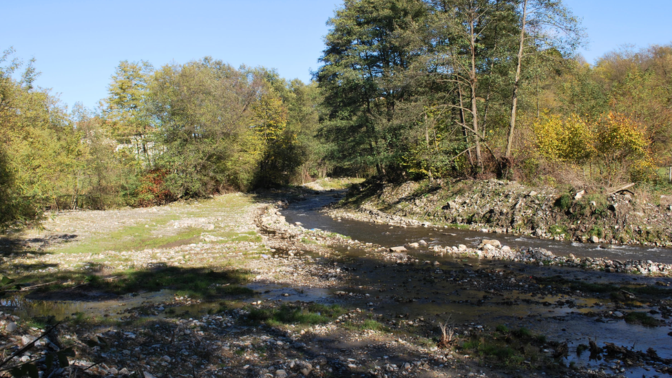 Image shows the Valsan river
