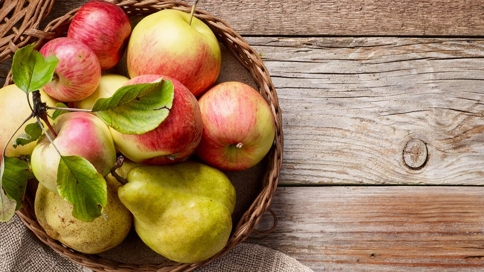 Apple and pear varieties saved by Aberystwyth scientists - BBC News