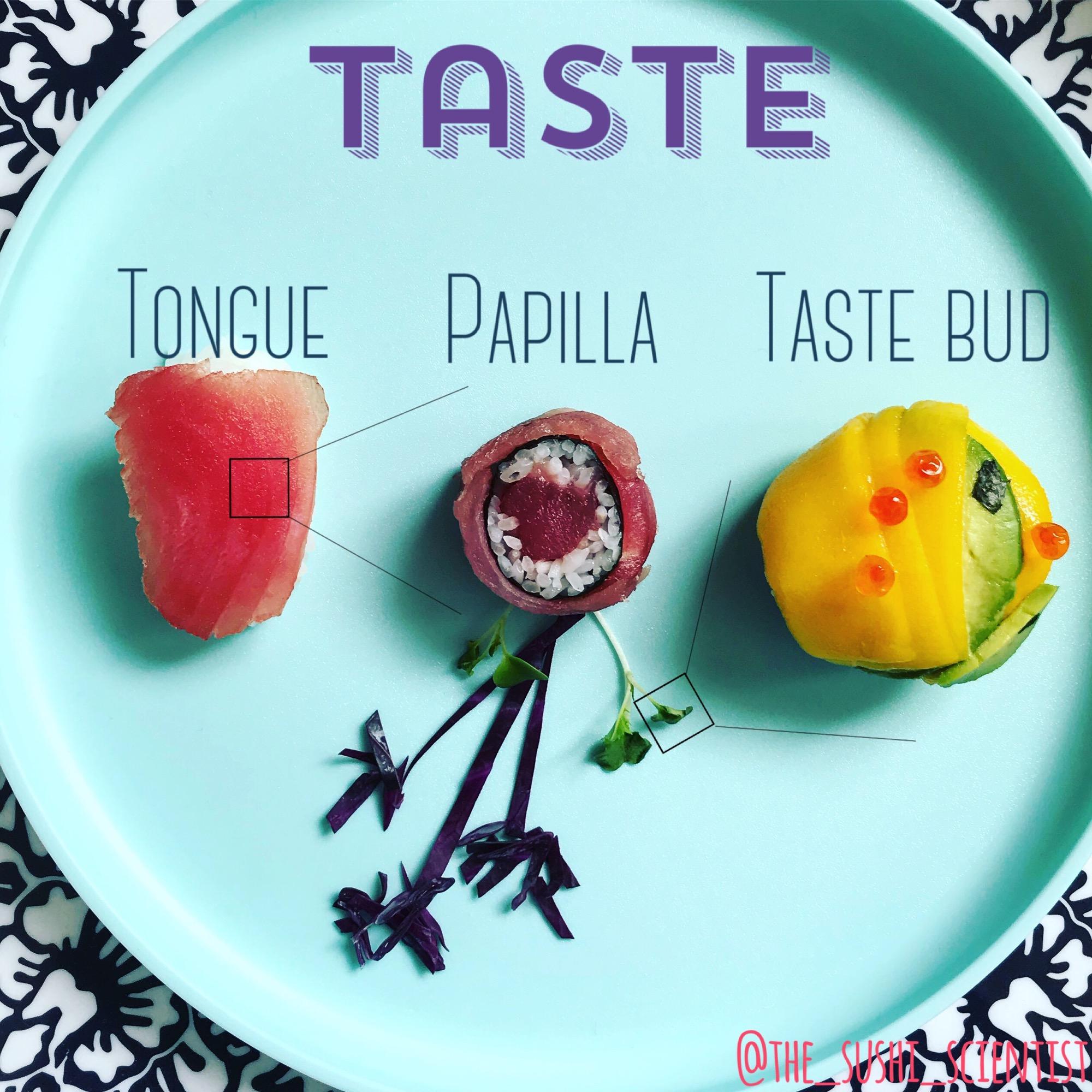Gráfico del sistema de reconocimiento de sabores hecho con sushi