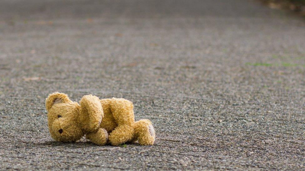 osito de peluche en la carretera