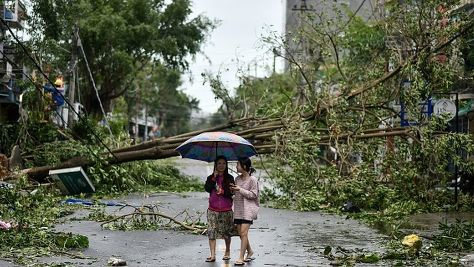 Women walk past uprooted trees in central Vietnam's Quang Ngai province