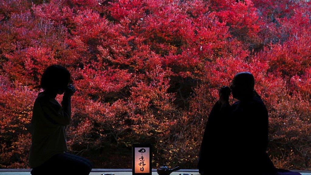 اعتدال الخريف مناسبة لتذكر الأسلاف في اليابان