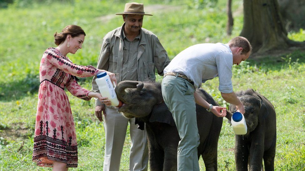 The Duke and Duchess of Cambridge feed baby elephants at the Centre for Wildlife Rehabilitation and Conservation (CWRC) at Panbari reserve forest in Kaziranga