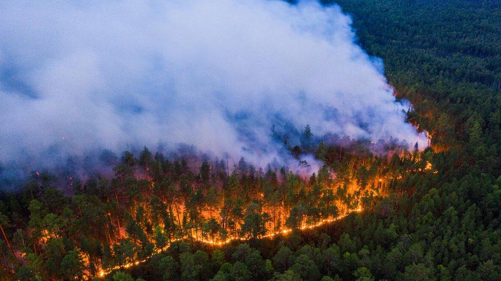 Siberian fires