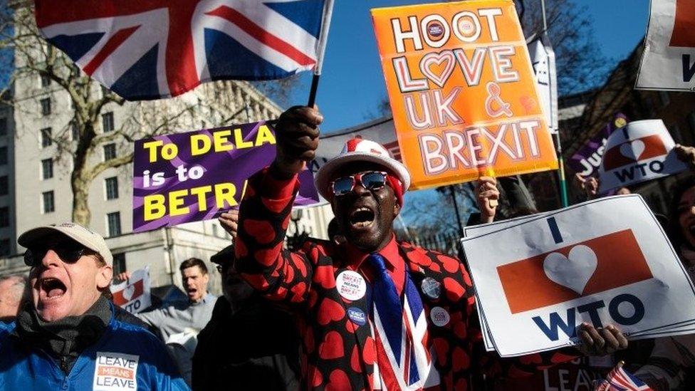 Pro-Brexit protestors