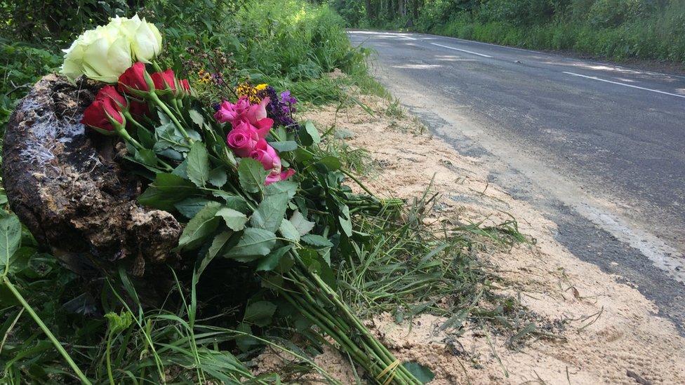 Flowers on the roadside