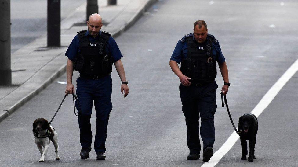Police dog-handlers at work