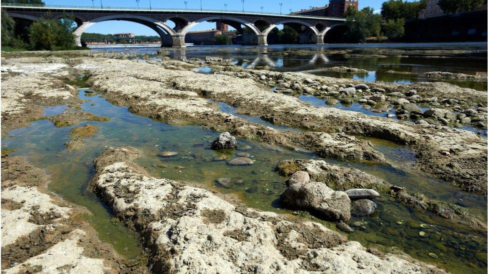 Reka koja je skoro presušila zbog vrućine