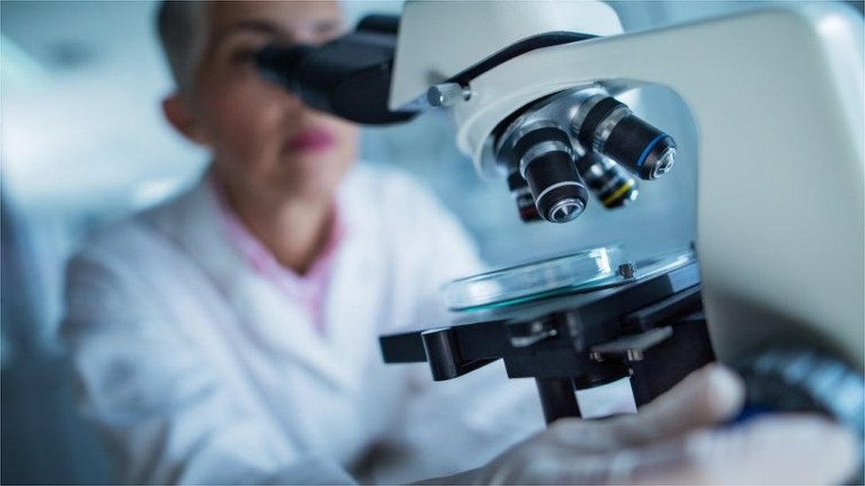 Artificial intelligence can be weapon in cancer fight, PM to say