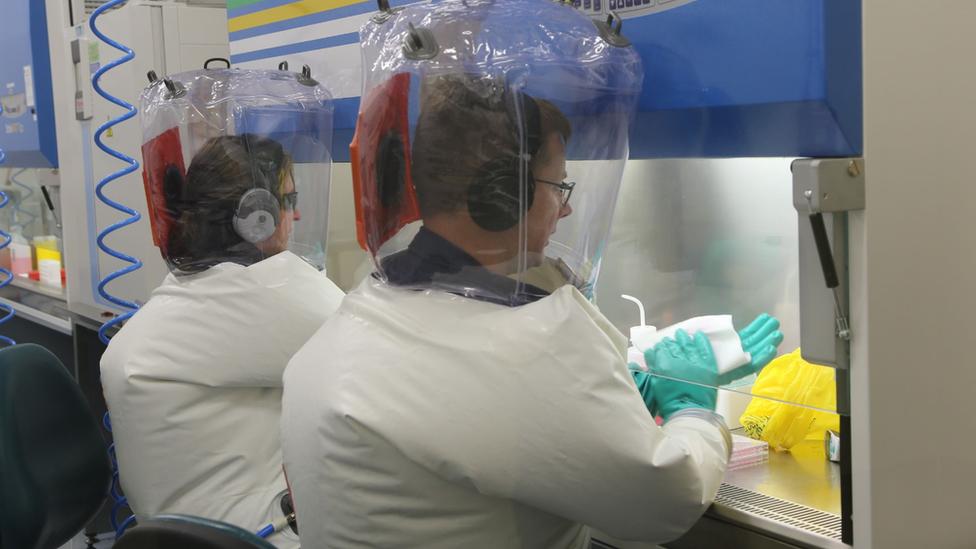 Naučnici organizacije CSIRO testiraju dve potencijalne vakcine
