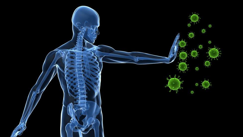 ilustracija borbe imuniteta sa zarazama