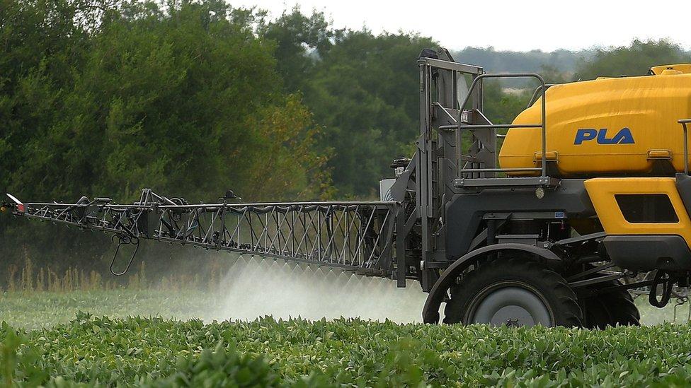A soybean field is fumigated near Urdinarrain, Entre Rios province, Argentina, on February 8, 2018