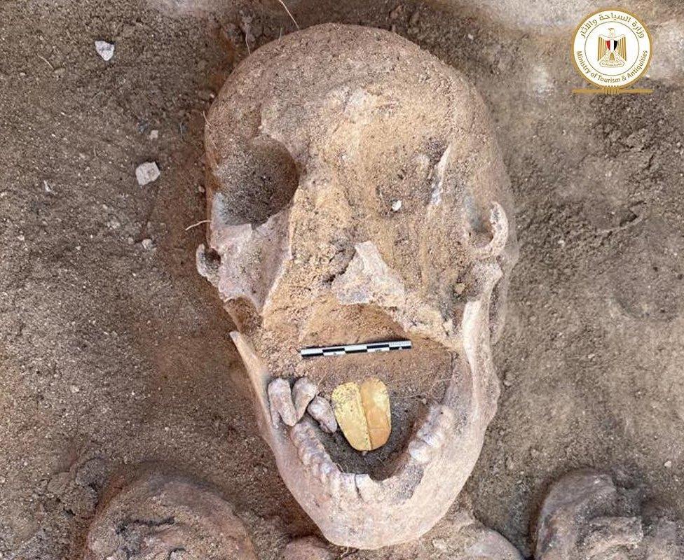 بقايا مومياء مصرية