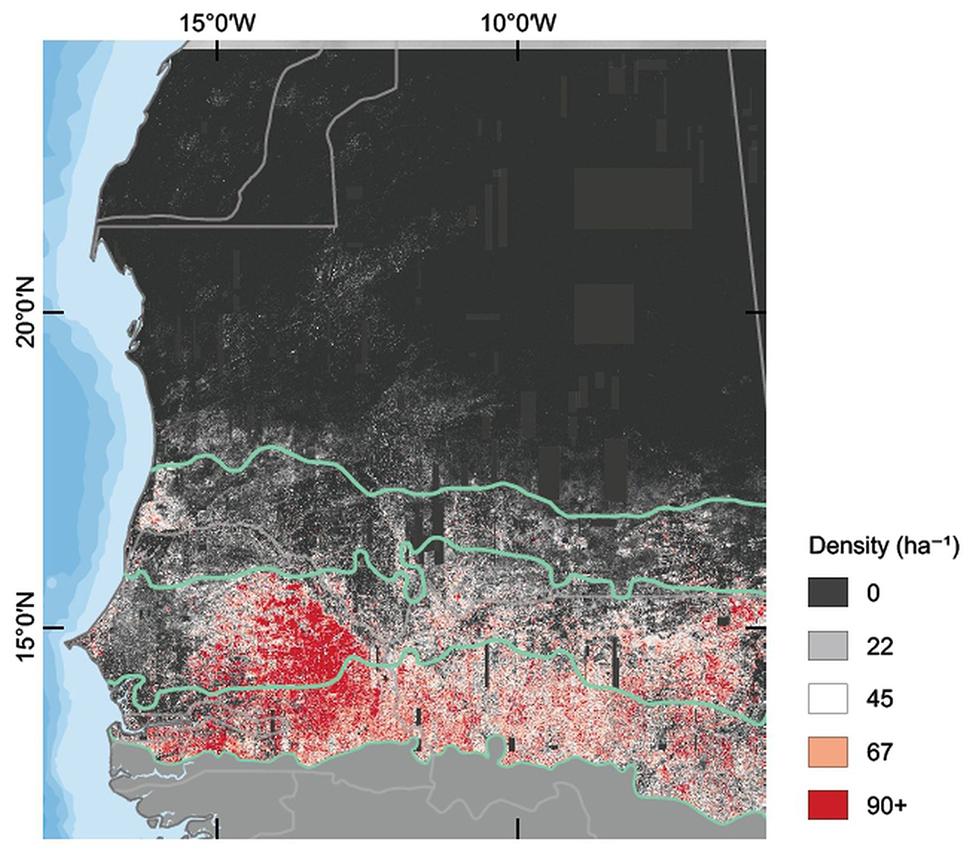En este mapa se puede ver la cantidad de árboles por hectárea en la zona estudiada.