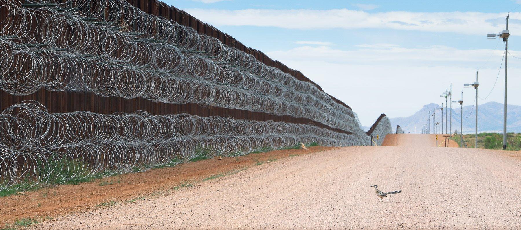 Ptica trkačica zaustavila se pored zida koji predstavlja granicu između Sjedinjenih Američkih Država i Meksika