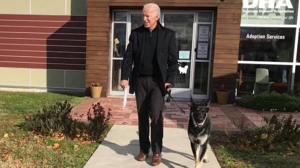 Biden's adopted new dog - and other political pets