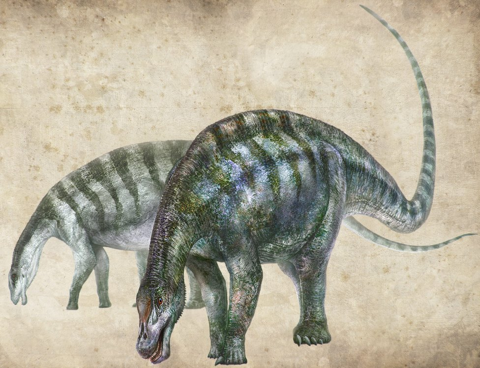 Illustration of a dinosaur with a long tail, green markings and a long snout