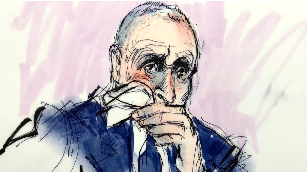 Dibujo de Vernon Unsworth en el juicio por difamación a Elon Musk