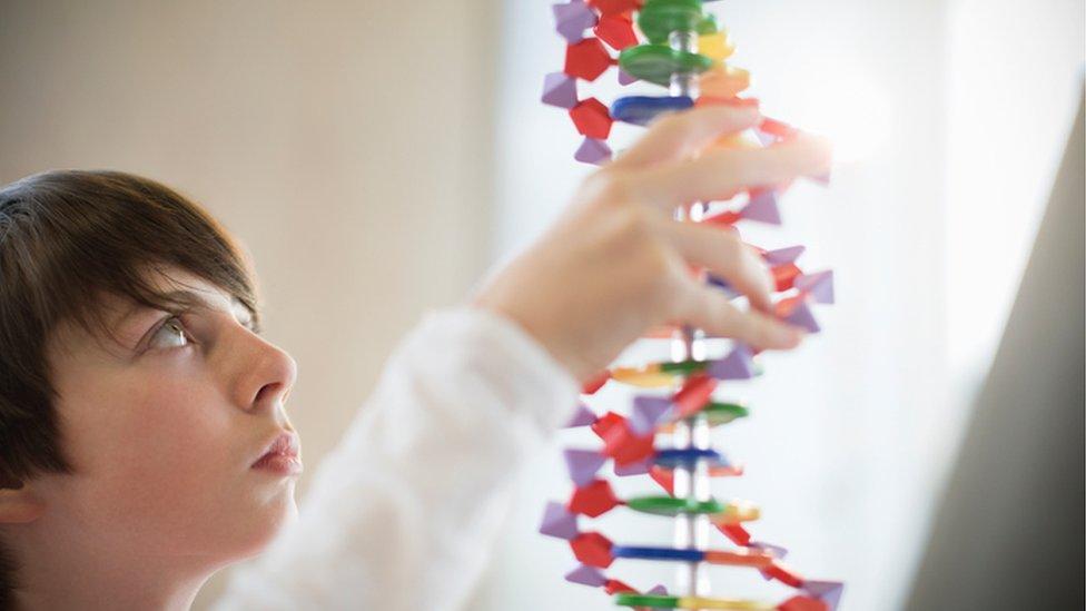 Un niño con un modelo de ADN