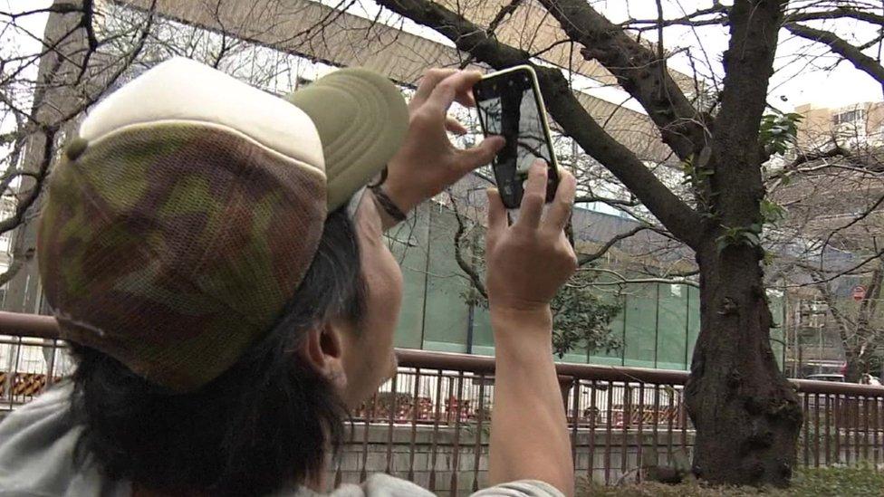 Čovek koji snima cvat trešnje